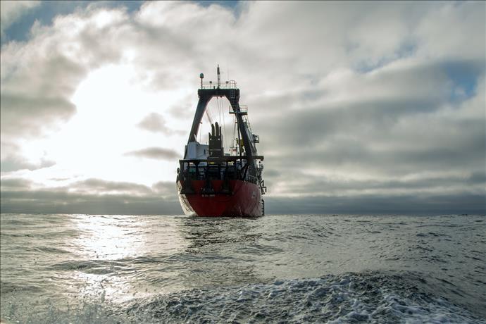 Sular Çekilince: Derin DalışYeni Bölümleriyle National Geographic Ekranlarında