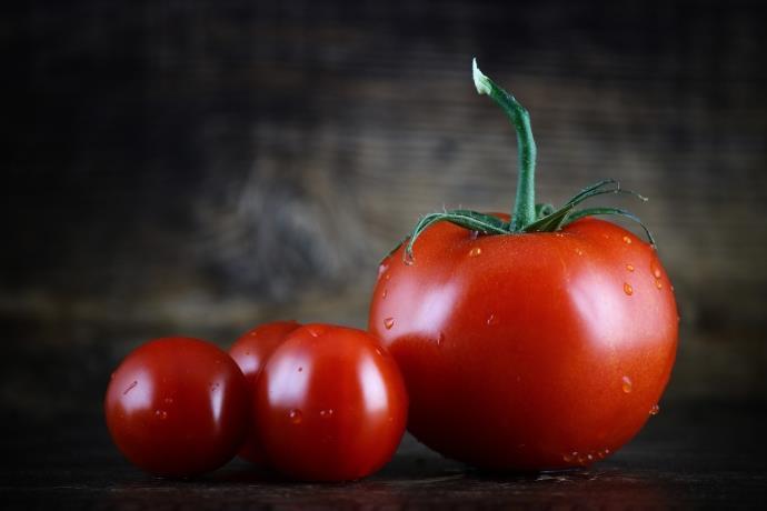 Bilim insanları uzayda yetişen domates üretti