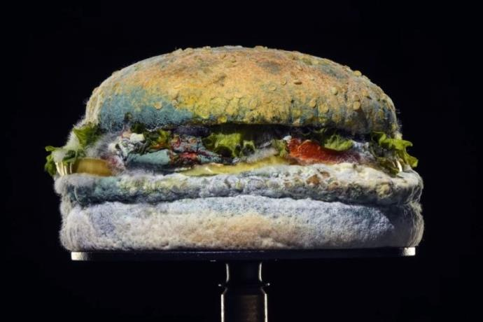 Burger King'den küflü hamburger reklamı