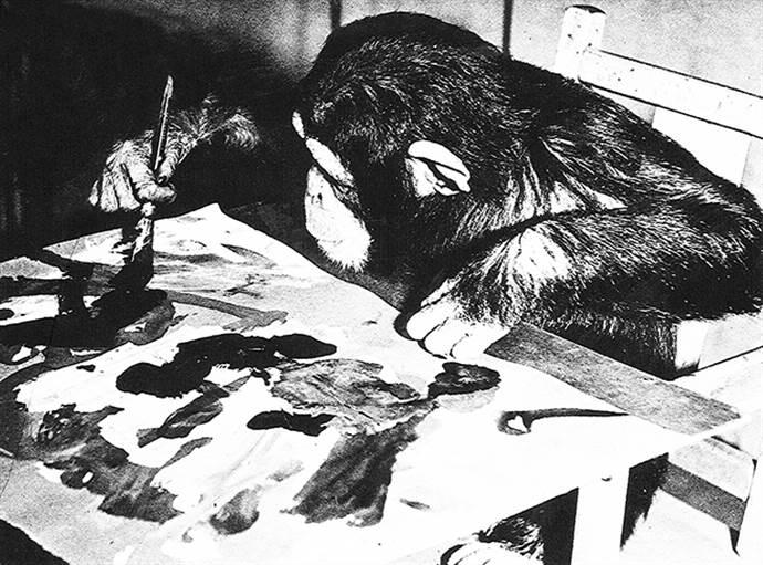Ünlü ressam şempanze Congo'nun eserleri satılacak