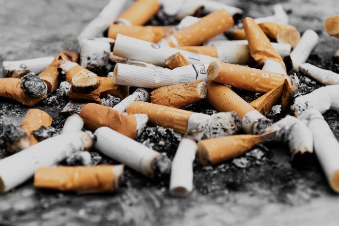 Sigara bırakıldığında akciğer kendi kendini iyileştiriyor