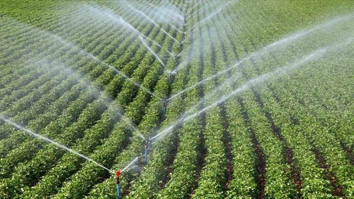 Tarımda verim son 10 yılda yüzde 30 arttı