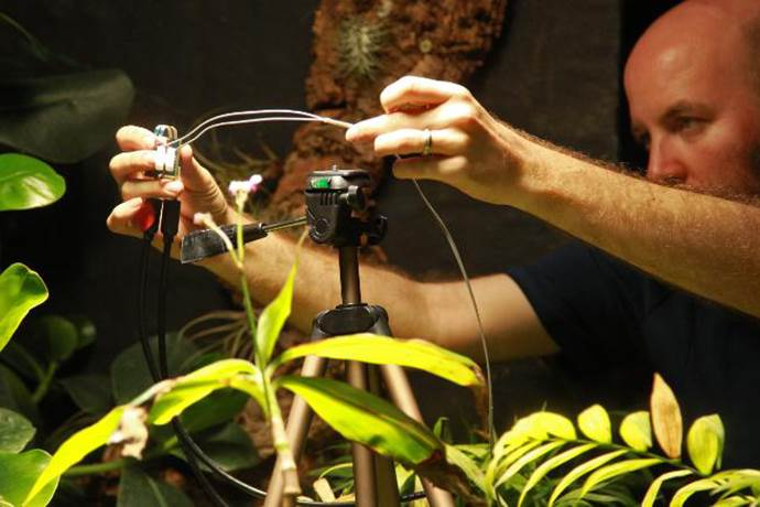 Dünyada ilk kez bir bitki tarafından selfie çekildi