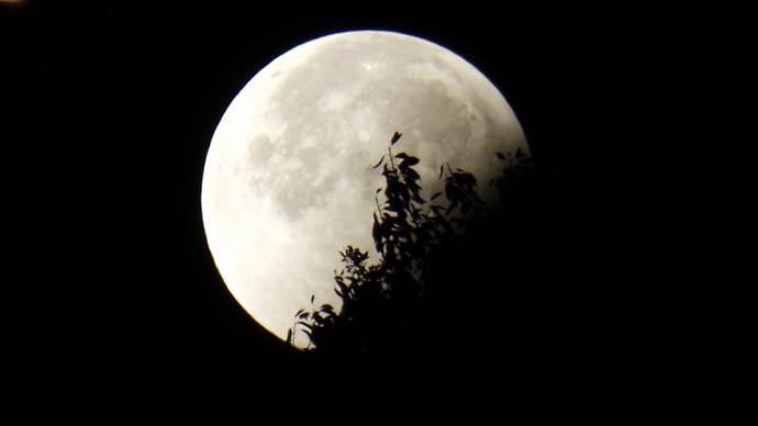 28 Ekim'deki Akrep Burcunda Yeni Ayın burçlara etkisi