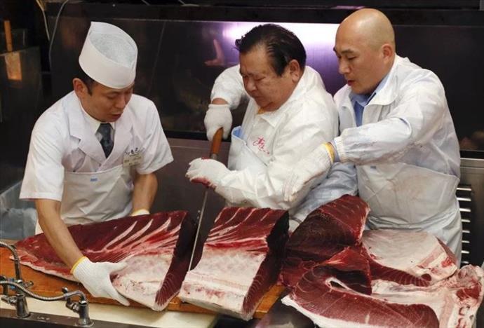 Açık artırmada 11 milyon liraya satılan balık