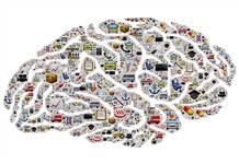 Beynin işletim formülü: Kullan ya da kaybet!