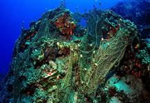 Denizlerde hayalet ağ taraması yapıldı